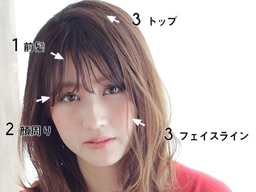 「前髪」「顔周り」「トップ&フェイスライン」がポイント