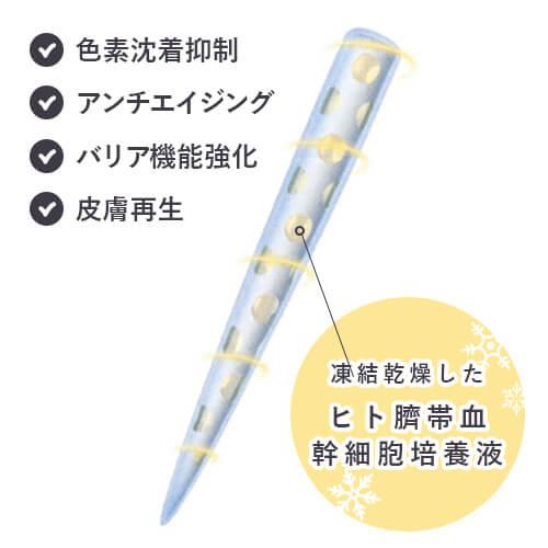 ヒト臍帯血幹細胞培養液をまとった針(イノスピキュール)