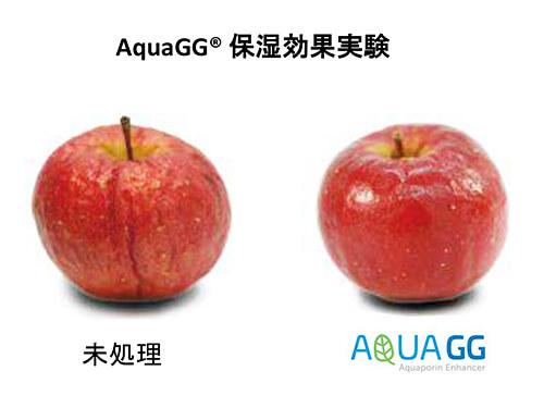アクアGG保湿効果実験をしたリンゴ